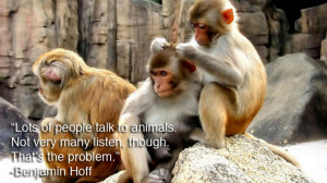 forums: [url=http://www.imagesbuddy.com/lots-of-people-talk-a-animals ...