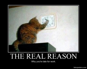 The Real Reason - Demotivational Poster