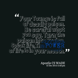 Be Careful What You Say Quotes