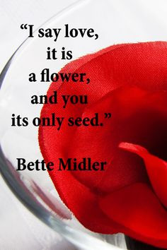 "say love, it is a flower, and you its only seed."" -- Bette Midler ..."