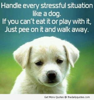 Home » funny life quotes » funny quotes » handle every stressful ...
