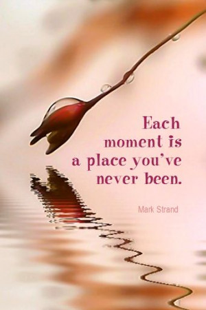 ... quote #quoteoftheday Each moment is a place you've never been. - Mark