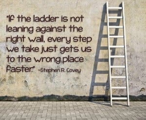 ... picture of the ladder, you have determined the wall you wish to climb