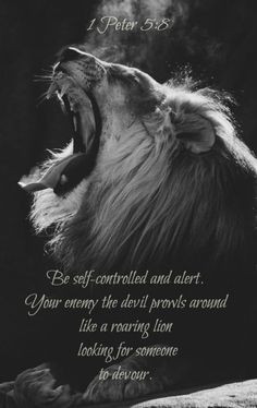 ... quotes saying quotes from the lion king peter 5 8 roaring lion lion