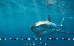 Shark Week Let See Those Quotes Preferably Ones That We Wallpaper with ...