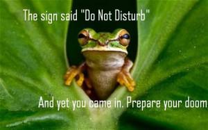 frog-new-granada_1765148c.jpg