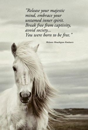 Born To Be Free Quotes