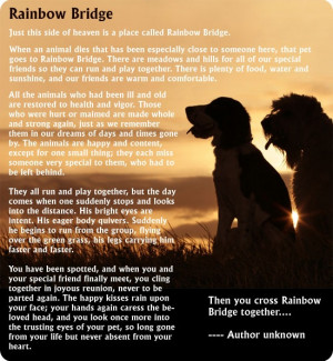 Just this side of heaven is place called Rainbow Bridge. When an ...