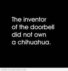 funny quote the inventor of the doorbell did now own a chihuahua More