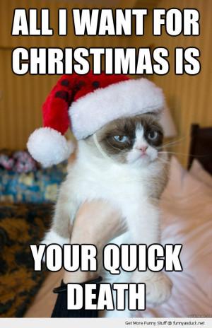 grumpt angry cat lolcat animal santa hat all want xmas christmas quick ...