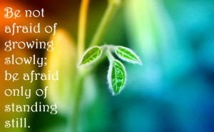 ... in growing your wealth, you need to commit to a never ending growth