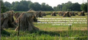 Bible Quotes Verses Jesus