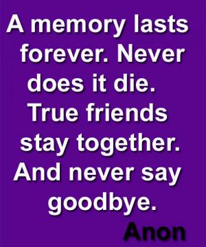 True-Friends-Never-Say-Goodbye-Friendship-Quote.jpg