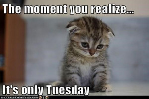 184746-The-Moment-You-Realize-It-s-Only-Tuesday.jpg