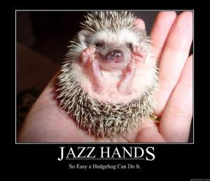 Jazz Hands Cat Quotes