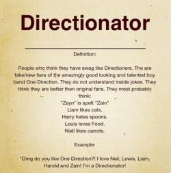 Ugh, You're Probably a Directionator