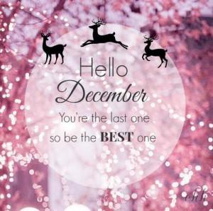 December, surprise me