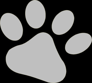 Ed Sheeran Paw Transparent Slate Pet Clip Art picture