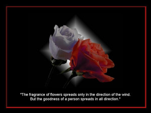 Golden Quotes #fb, #in