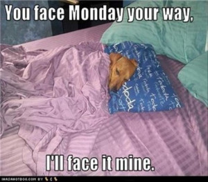 Monday Puppy Says you work on Monday I sleep in your bed and that's ...