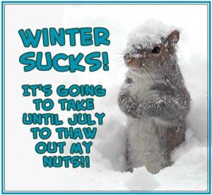Winter Sucks quotes winter snow funny quotes squirrel winter quotes ...
