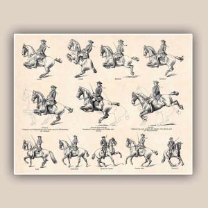 English Horseback Riding Quotes Horse riding school print
