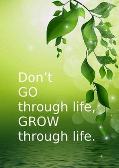 Grow through life quote by Eric Butterworth More