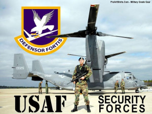Air Force Security Forces... What is love to do one day