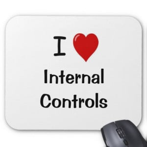 Love Internal Controls - Funny Compliance Quote Mouse Pad
