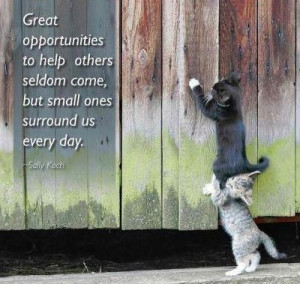 Great Opportunities To Help Others