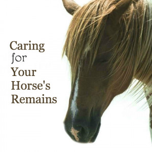 Caring for Your Horse's Remains