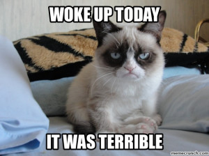Grumpy Cat on Mondays Oct 29 13:03 UTC 2012