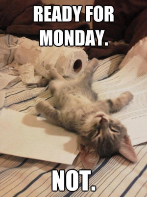 Funny monday picture quotes funny monday morning quotes and the two ...