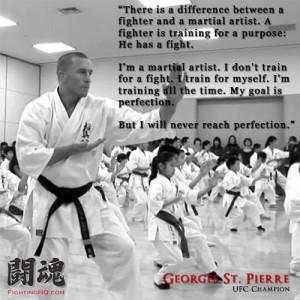Contemporary Martial Arts Quotes