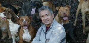 César com Algunsde seus cães.