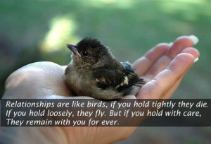 Relationships are like birds...
