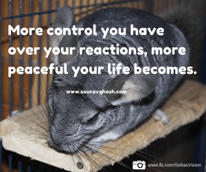 control-reactions