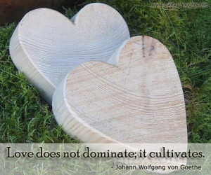 Love Quotes – Love does not dominate