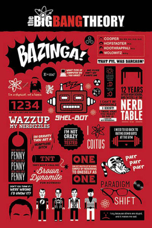 The-Big-Bang-Theory-Infographic-POSTER-61x91cm-NEW-Bazinga-quotes ...