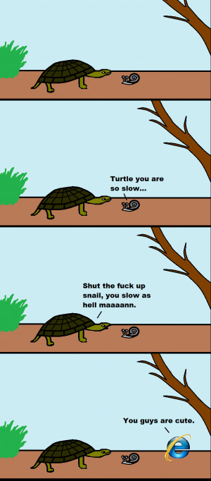 Funny Internet Explorer Memes Turtle snail and ie share