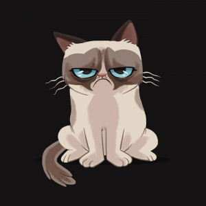 Grumpy Cat Cartoon in Angry Mood