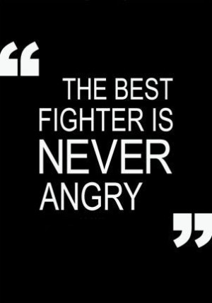 The best fighter never let's anger control them. Instead it is used as ...