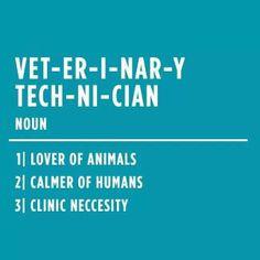 veterinary technician noun as a current tech and future vet i second 3 ...