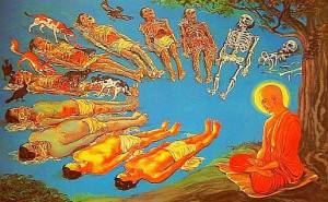 Impermanence of the Body | Nature of Body | Body Life Cycle