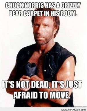 Chuck Norris 2013 joke