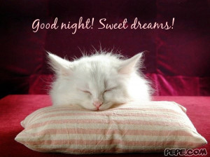 Good night! Sweet dreams!