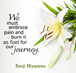 Sympathy Quotes: Words of Sympathy