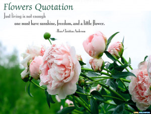 ... beautiful flower quotes 700 x 467 49 kb jpeg beautiful flowers with