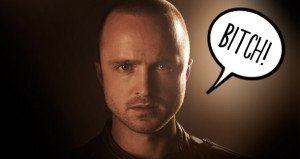 Jesse Pinkman Bitch...