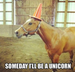 funny, horse, lol, quote, someday, text, unicorn